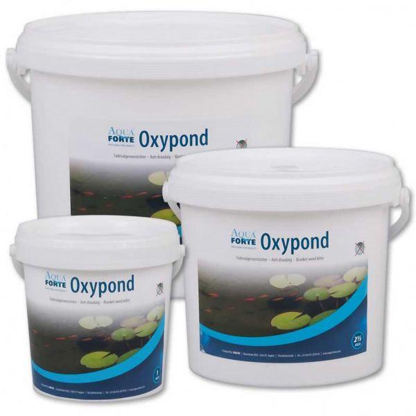 3 Gebindegrößen AquaForte Oxypond Fadenalgenvernichter im weissen Eimer